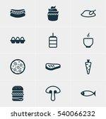 vector illustration of 12 dish... | Shutterstock .eps vector #540066232