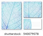 blue leaf backgrounds with... | Shutterstock .eps vector #540079078