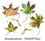 leaves isolated set  autumn...   Shutterstock . vector #540097462