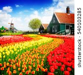 rural dutch scenery of small... | Shutterstock . vector #540103285