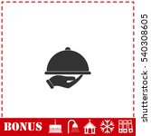 restaurant cloche in hand icon... | Shutterstock .eps vector #540308605