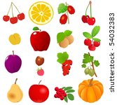 set of fruits | Shutterstock .eps vector #54032383