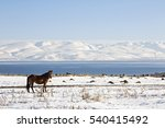 lake sevan in winter  armenia. | Shutterstock . vector #540415492