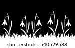 seamless silhouette grass and... | Shutterstock .eps vector #540529588