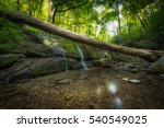 A fallen log suspended over a small waterfall and creek.