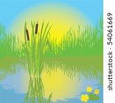 Landscape With Pond  Grass ...