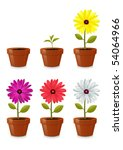 flower pot  isolated on white... | Shutterstock .eps vector #54064966