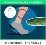non venomous snake bite in the... | Shutterstock .eps vector #540753625