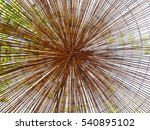 frame ivy made of bamboo   Shutterstock . vector #540895102
