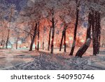 winter night landscape  ... | Shutterstock . vector #540950746