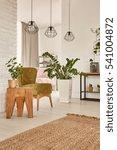 Interior With Decorative...