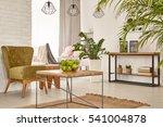 multifunctional interior with... | Shutterstock . vector #541004878