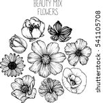 Mix Flowers Drawing Vector...