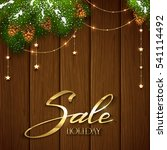 lettering holiday sale on brown ...   Shutterstock .eps vector #541114492
