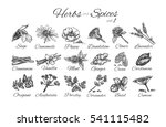 herbs and spices collection... | Shutterstock . vector #541115482
