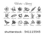 herbs and spices collection... | Shutterstock . vector #541115545