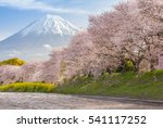 beautiful mountain fuji and... | Shutterstock . vector #541117252