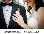 bride and groom   Shutterstock . vector #541232665