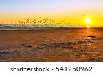 Sunset On Beach Horizon Panorama