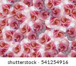 Small Flowers Geranium Pink...
