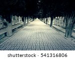 Road With Depth In A Cemetery ...