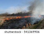 Burning Dry Grass And Reeds....