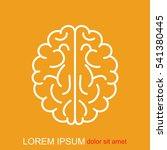 line icon   brain | Shutterstock .eps vector #541380445