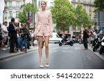 paris july 8  2015. elena... | Shutterstock . vector #541420222