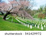 arlington cemetery in virginia. ... | Shutterstock . vector #541429972