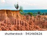 desierto de la tatacoa ... | Shutterstock . vector #541460626