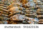 Blue Swimming Crabs On Iced