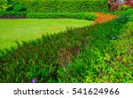 blurred green lawn  the front... | Shutterstock . vector #541624966