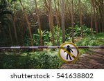 pass mark is prohibited ... | Shutterstock . vector #541638802