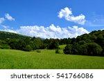 Green  Sky Landscape