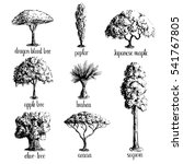 Set Of Hand Drawn Tree Sketche...