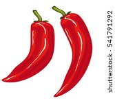 red hot chili pepper. paprika... | Shutterstock .eps vector #541791292