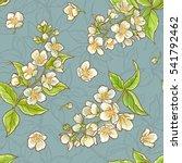 jasmine seamless pattern | Shutterstock .eps vector #541792462
