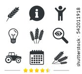 agricultural icons. wheat corn... | Shutterstock . vector #542011918