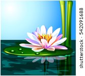 water lily | Shutterstock .eps vector #542091688