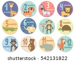 cute twelve months stickers...   Shutterstock .eps vector #542131822