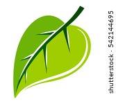 green leaf vector illustration. ... | Shutterstock .eps vector #542144695