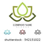 beauty vector lotus flowers... | Shutterstock .eps vector #542151022