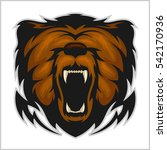 angry bear head   isolated on... | Shutterstock .eps vector #542170936