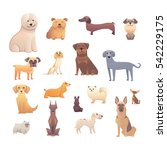 Stock vector group of purebred dogs illustration for dog training courses breed club landing page and 542229175