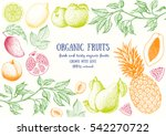 fruits top view frame. farmers... | Shutterstock .eps vector #542270722