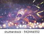 image of elegant venetian ... | Shutterstock . vector #542446552