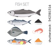 fish set meat fresh delicious... | Shutterstock .eps vector #542581516