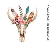 watercolor isolated bull's head ... | Shutterstock . vector #542599972