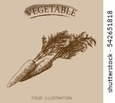 hand drawn vegetables isolated... | Shutterstock .eps vector #542651818