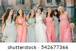 beautiful bride with her pretty ... | Shutterstock . vector #542677366